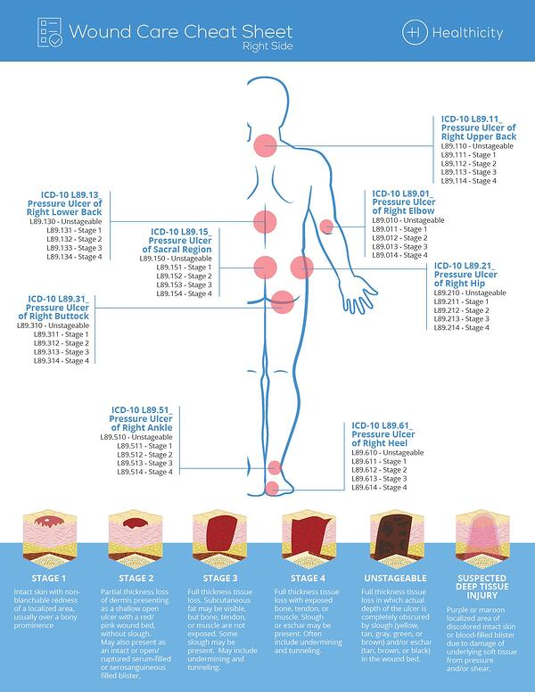 Dissecting Wound Care A Cheat Sheet Infographic Healthicity
