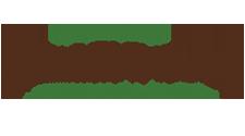 Millennium Physican Group Logo